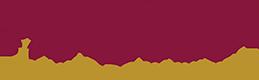 Aster Footer Logo